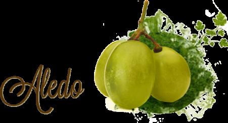 uva vinalopo aledo