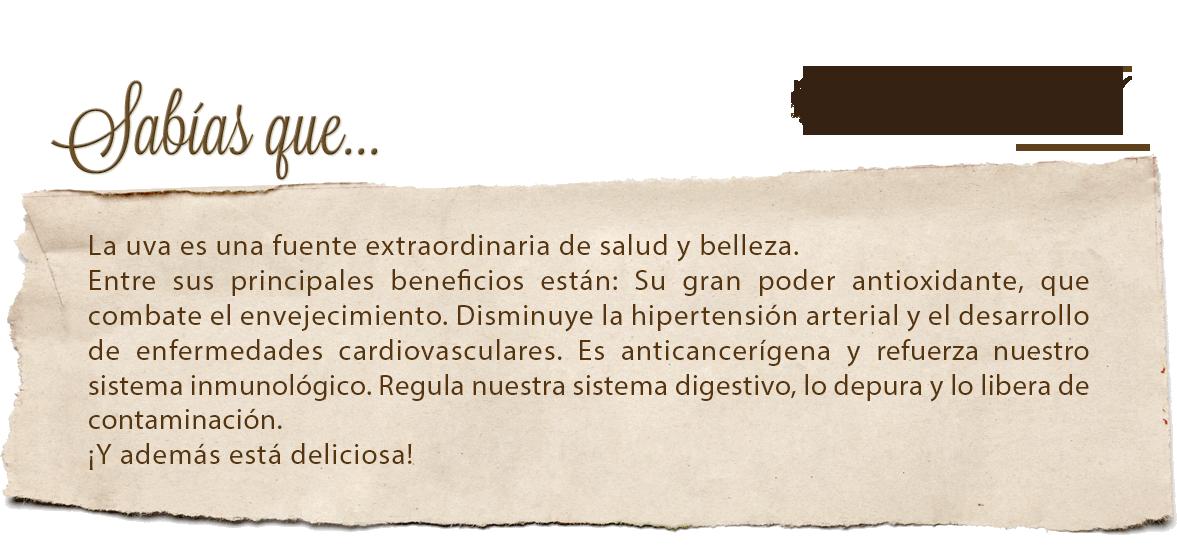 elreclot_uva_es