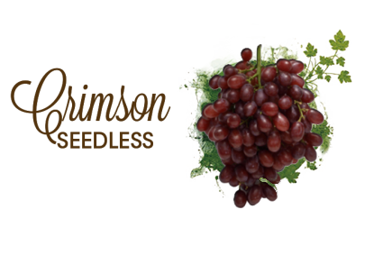 Crimson_seedless