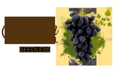 autumn_seedless
